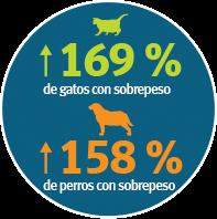 Estado de salud de las mascotas