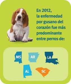 En 2012, la enfermedad por gusano del corazón predominaba en los perros de Misisipi, Arkansas, Luisiana, Alabama y Carolina del Sur.